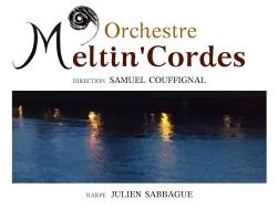 Affiche Concert de Meltin'Cordes 12:10:2018